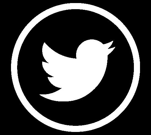 logo-twiter